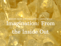 Imagination: From the Inside Out