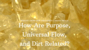Read more about the article How are Purpose, Universal Flow and Dirt Related?