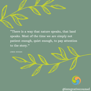 Read more about the article How to be Mindful in Nature