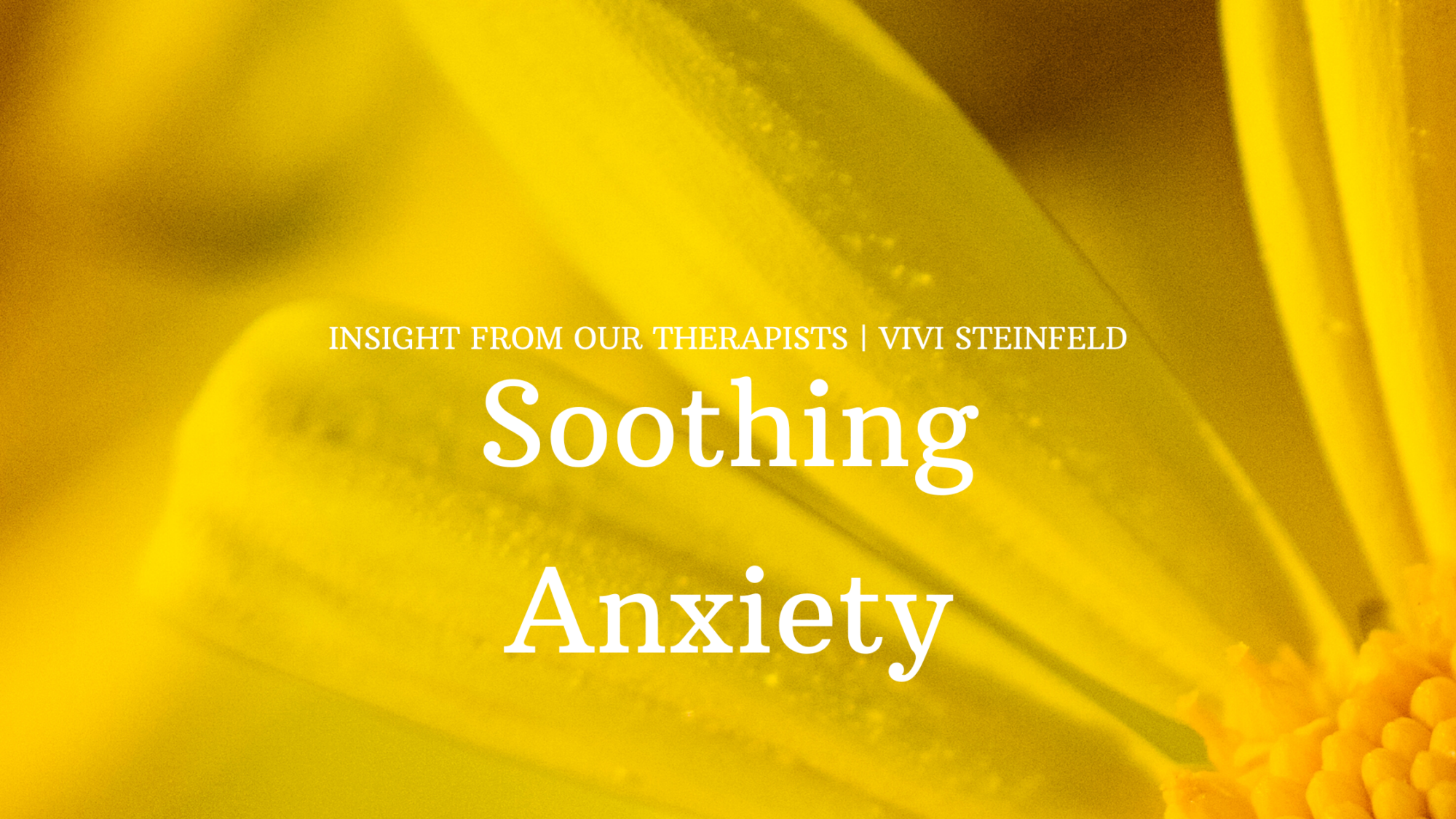 Read more about the article Soothing Anxiety
