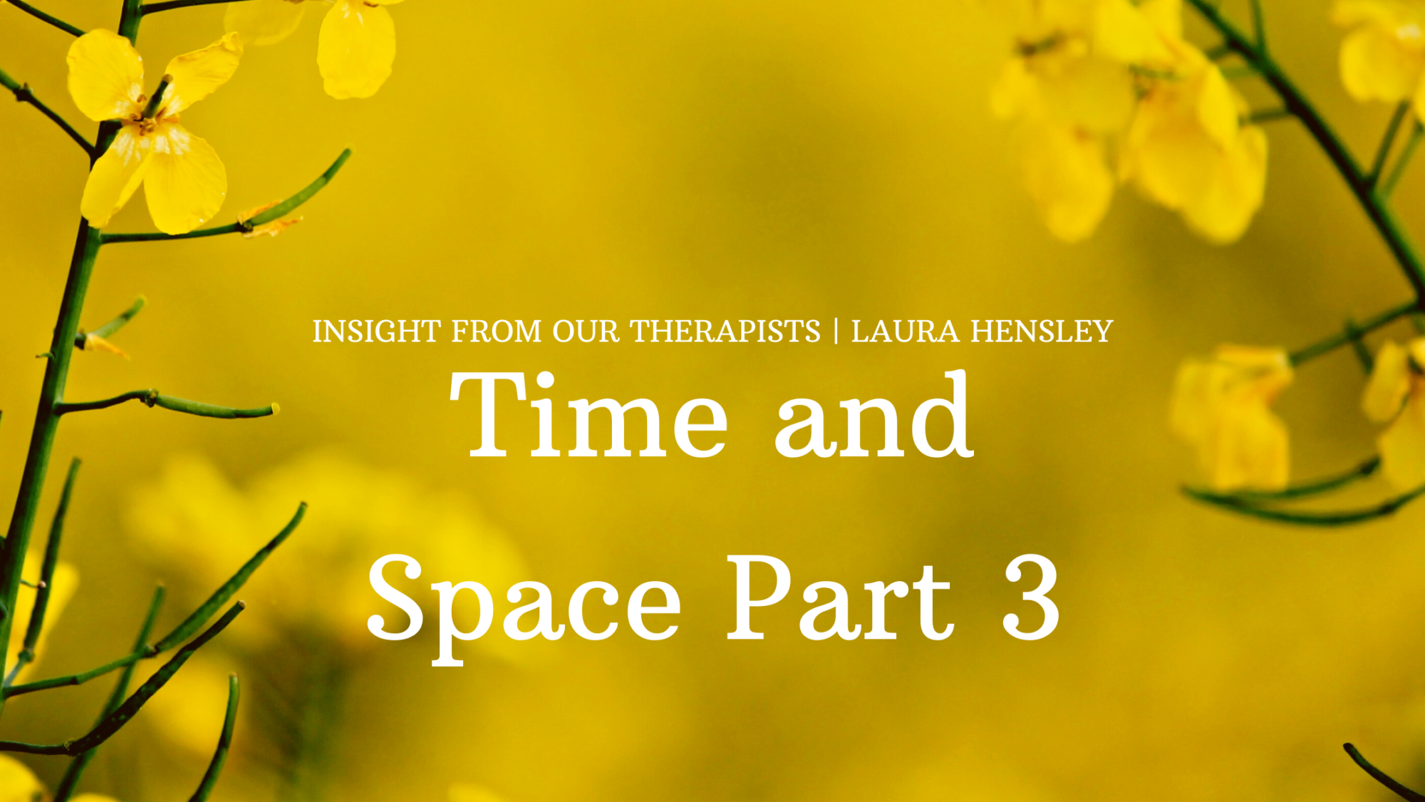 Read more about the article Time and Space Part 3 – A Room of One's Own