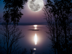 Embrace the Full Moon