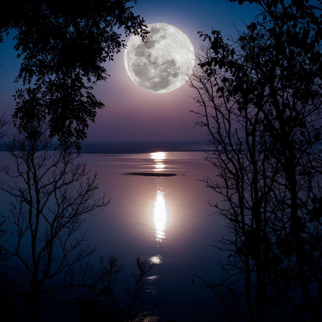 Read more about the article Embrace the Full Moon