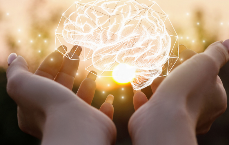 What's Supporting Our Brains This Month