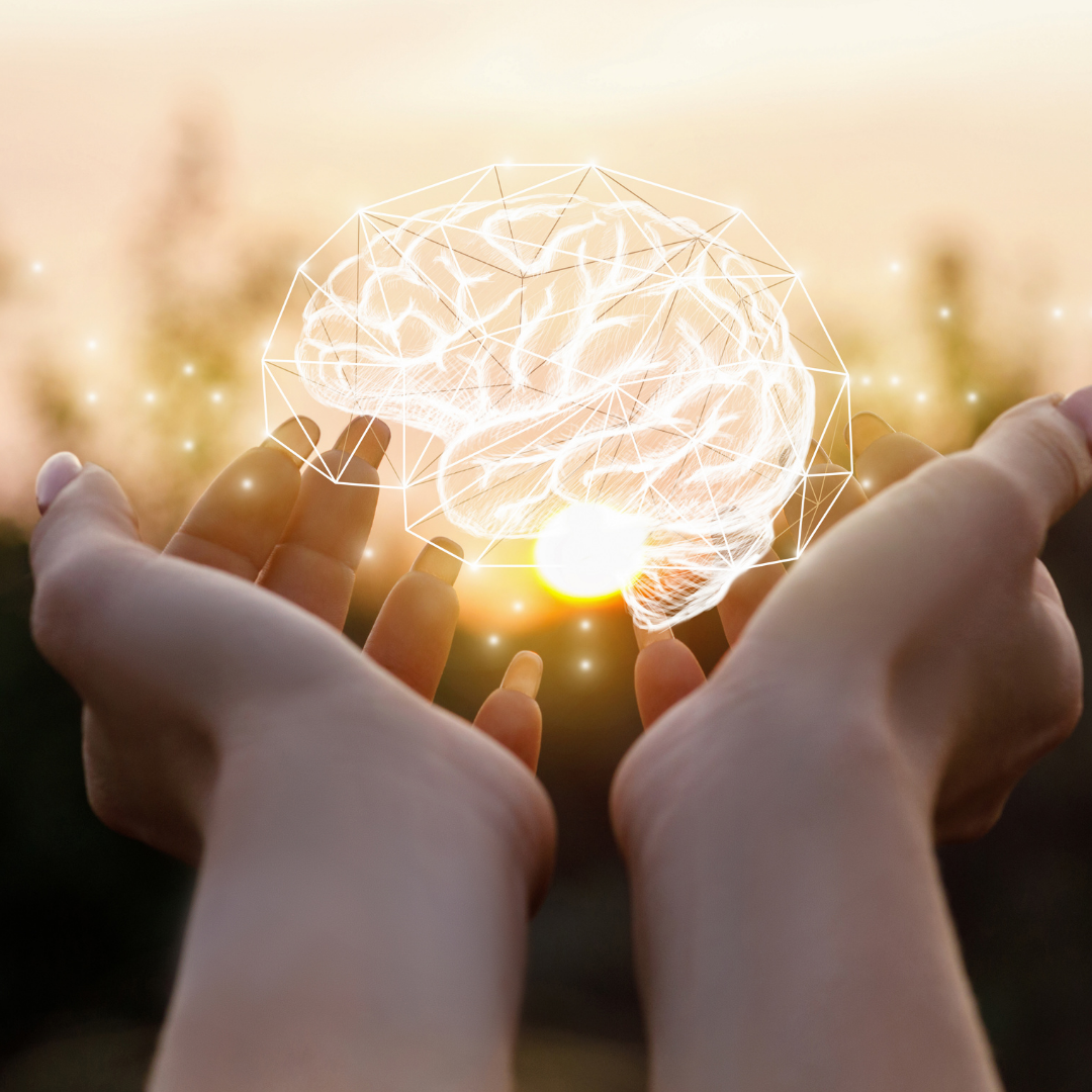 Read more about the article What's Supporting Our Brains This Month